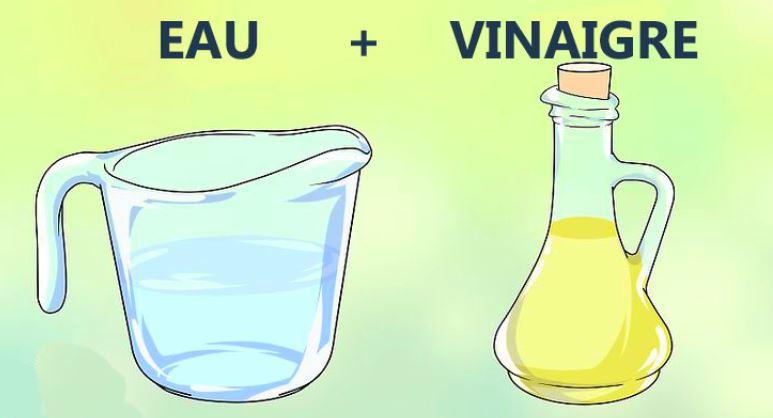 deboucher sanibroyeur vinaigre