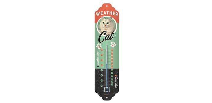 thermometre intérieur retro