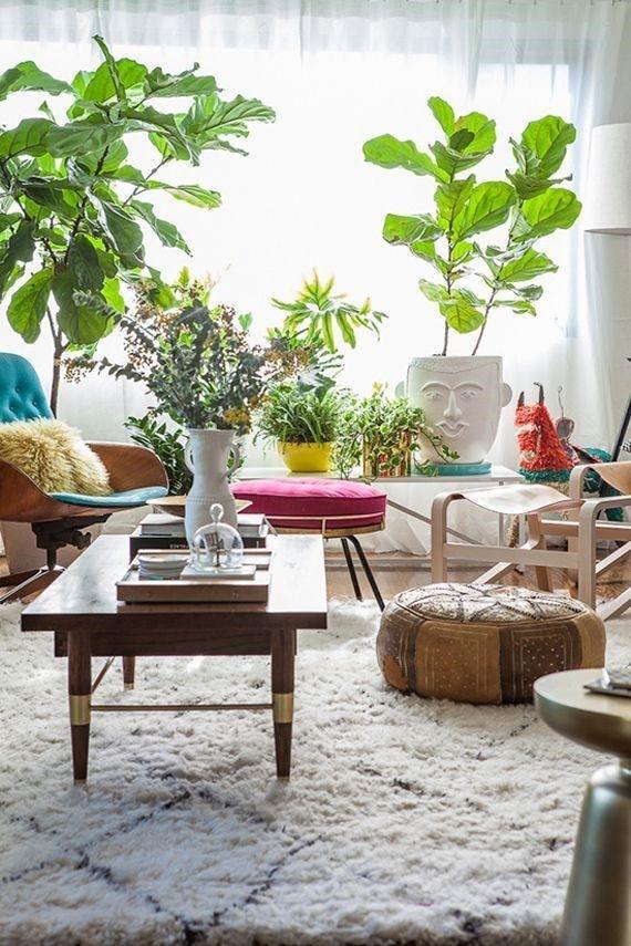 Deco Plantes verte salon cosy cocooning