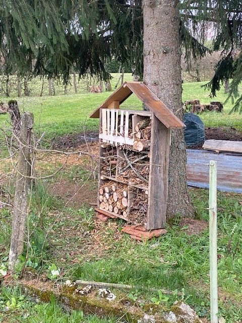 maison a insecte fait maison