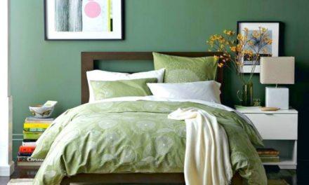 Chambre verte : idées et conseils