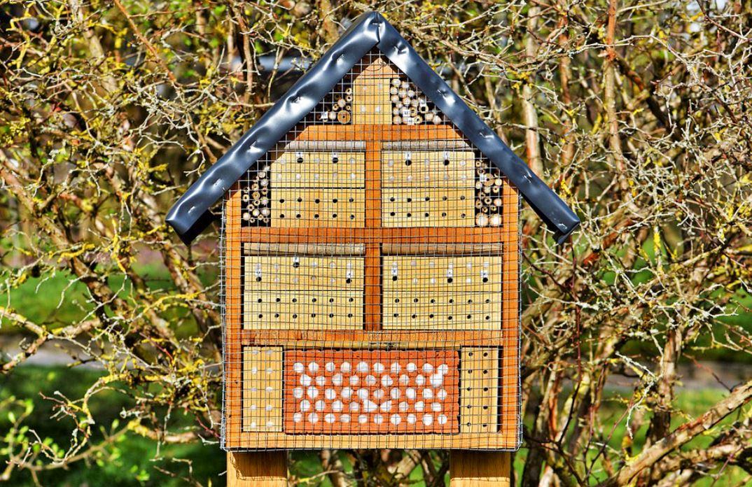 une petite maison d'insectes
