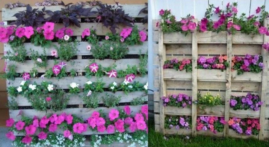Modèles mur végétalisé palette
