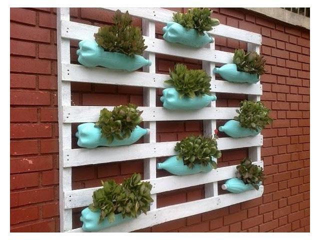 Mur végétal bouteilles et palettes