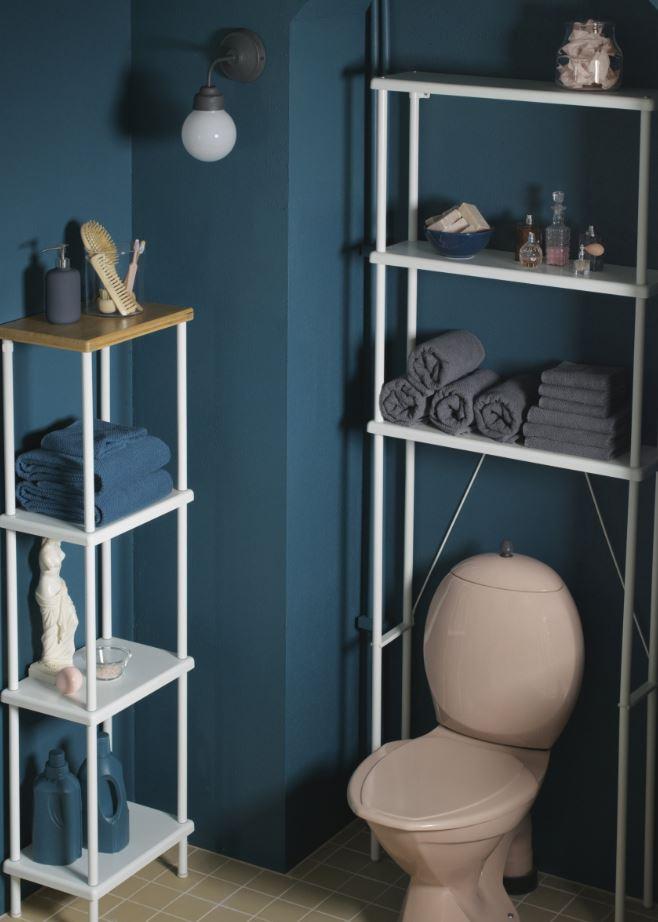 Toilettes bleu canard