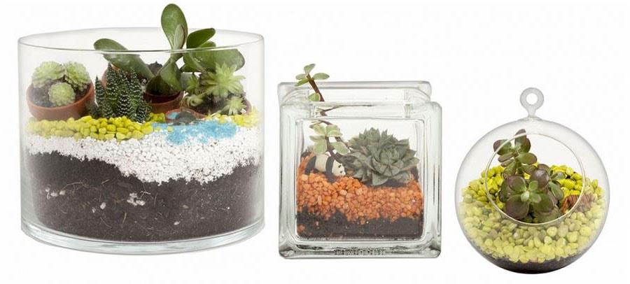3 modèles de terrariums