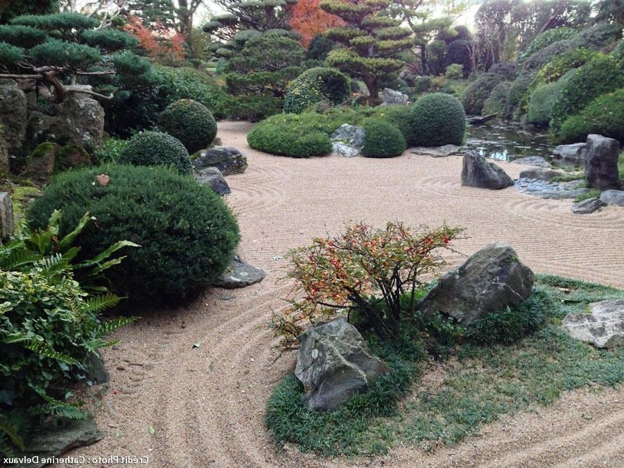 Jardin sec végétalisé
