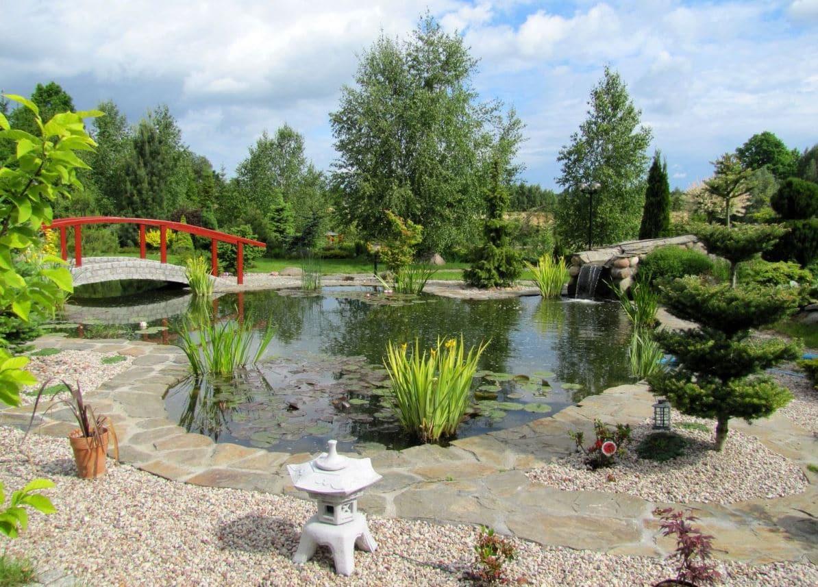 Jardin zen avec plan d'eau