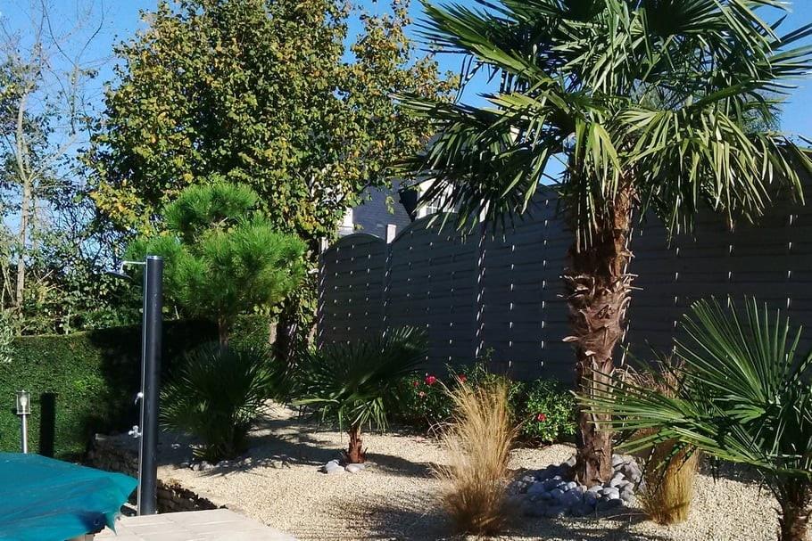 Jardin zen avec végétaux