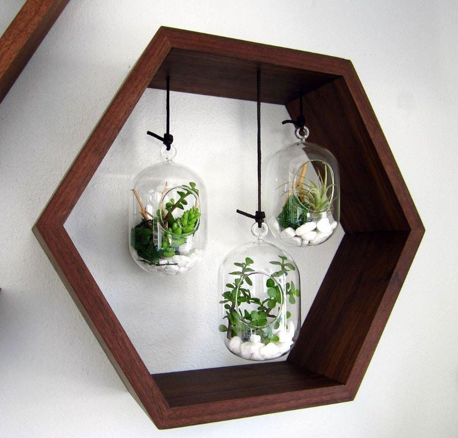 Tableau terrarium