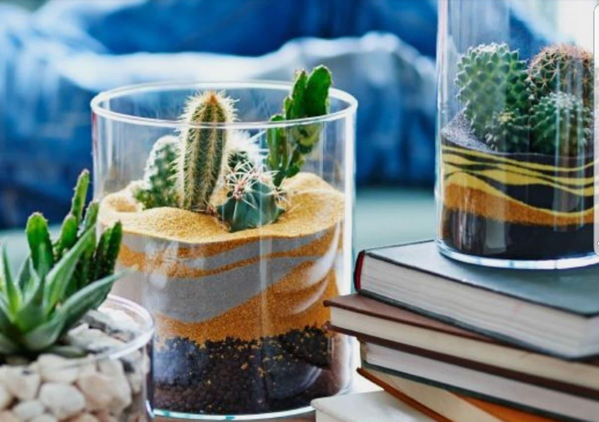 Terrarium sable et galets