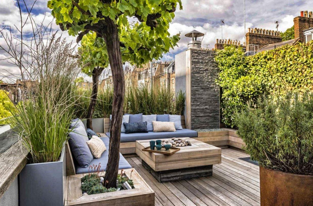Plantes De Terrasse Arbustes aménagement terrasse : 26 idées, conseils, photos et astuces