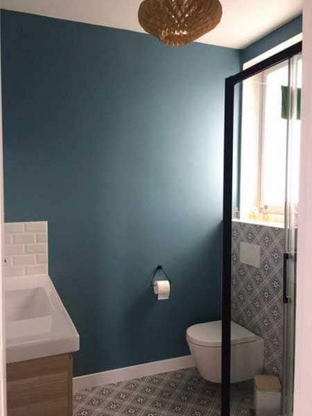 Toilettes Bleu Pétrole