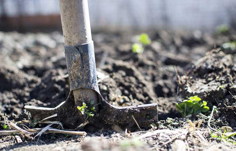 Becher Jardin sans se fatiguer
