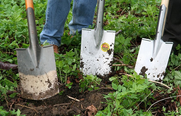 Engrais Naturel Jardin Bio
