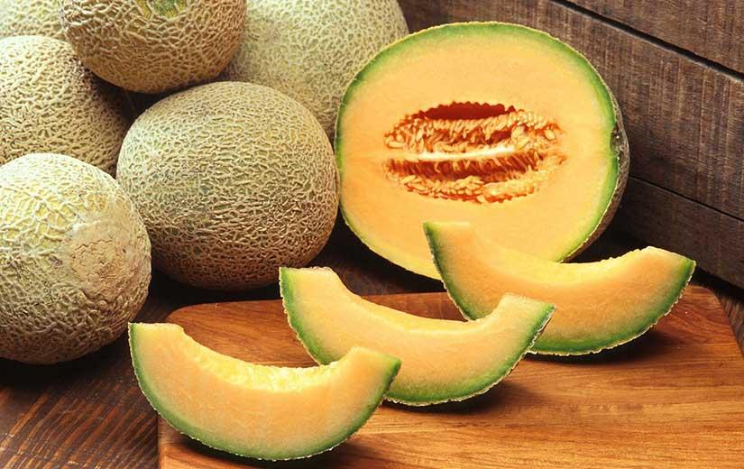Melon Cantaloup Variétés