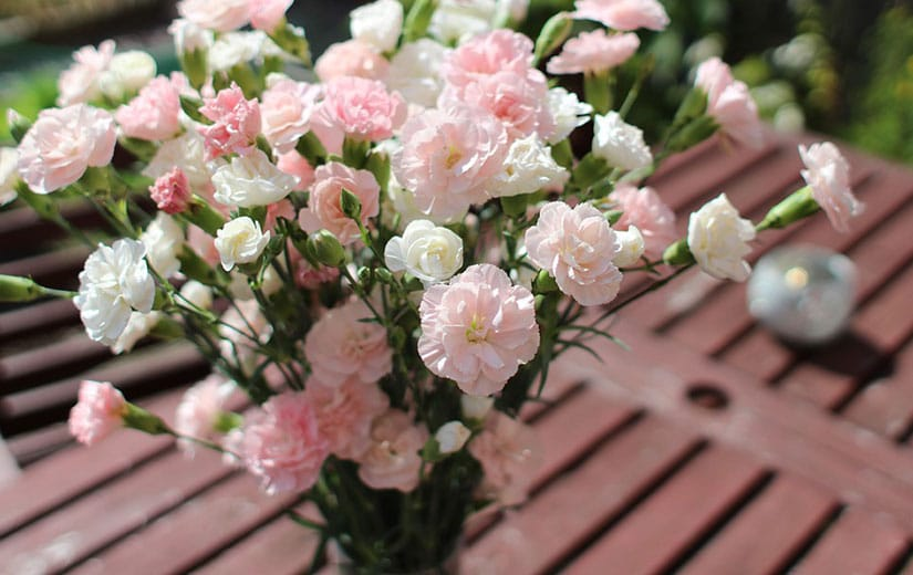 Bouquet Fleur Annuelle