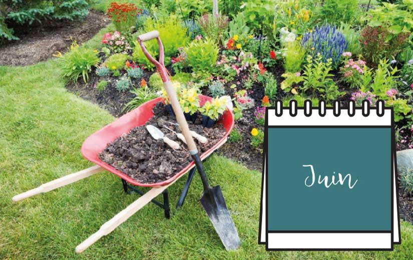 Calendrier Jardin Juin
