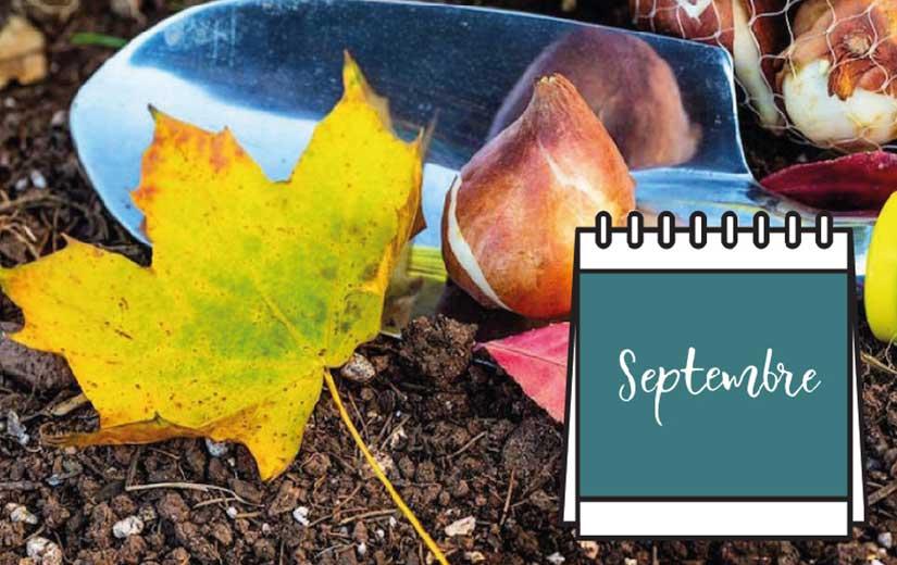 Calendrier Jardin Septembre