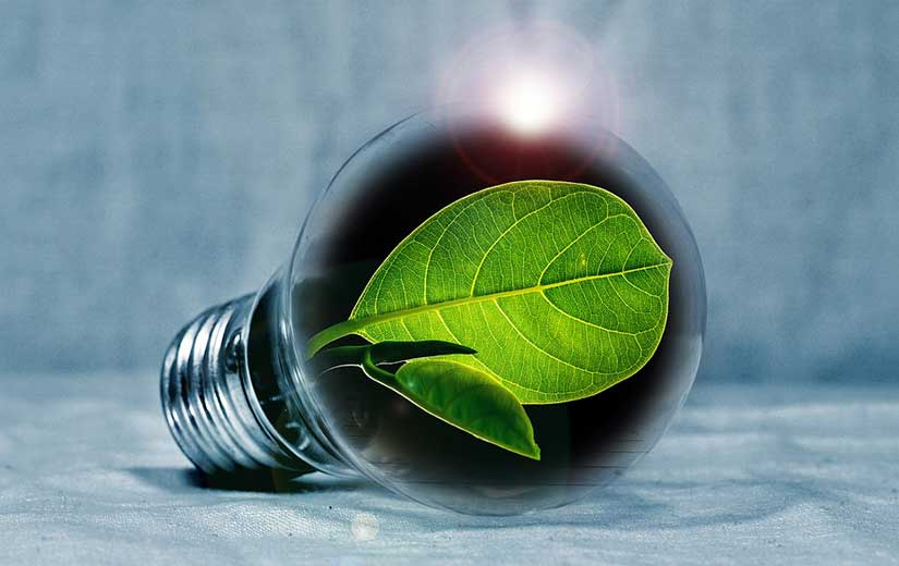 Energie Verte Maison