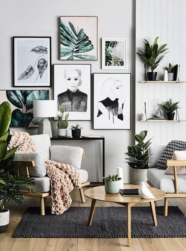 Plantes Et Affiches