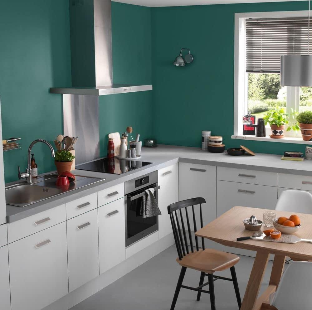 Peinture pour une cuisine blanche  quelle couleur choisir