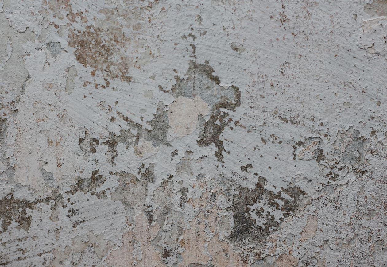 Repeindre Mur Peinture écaillée