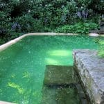 Filtration Piscine Naturelle