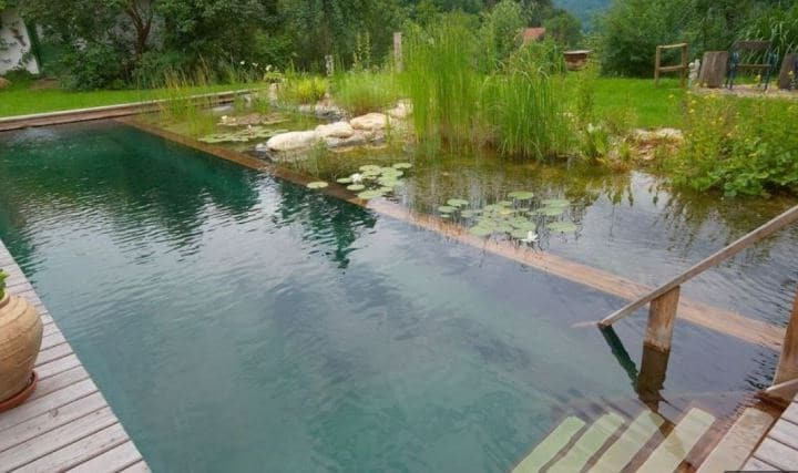 Piscine Naturelle Filtration