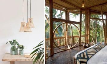 Déco Bambou