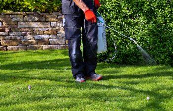 Pulveriser Pesticides Jardin
