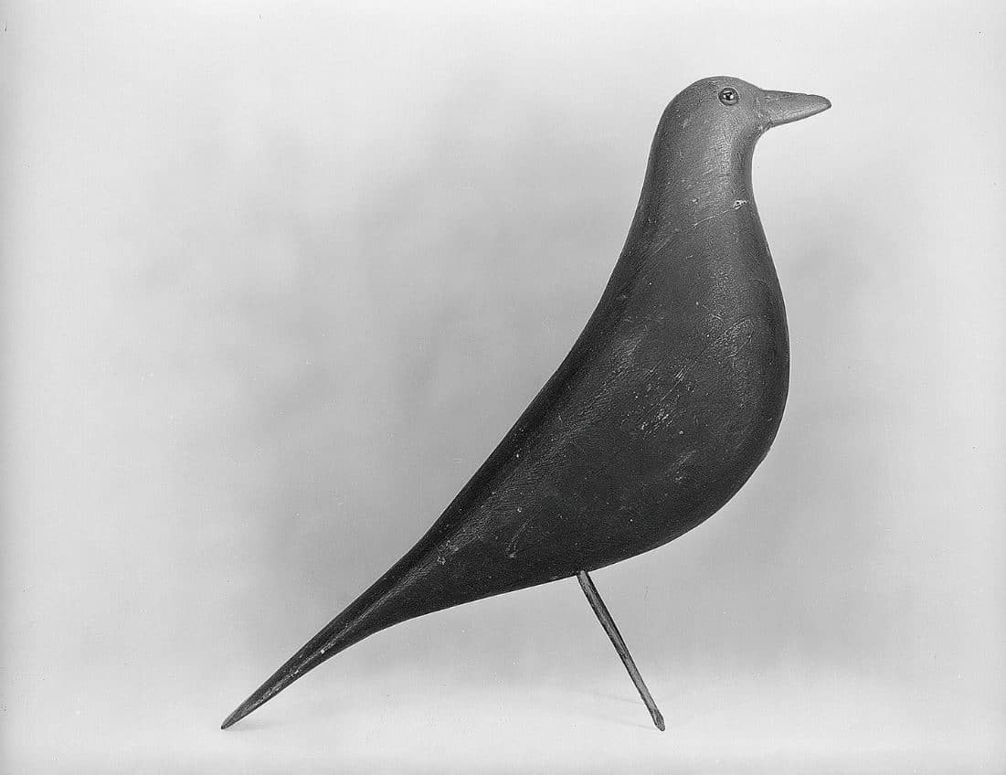 Oiseau Eames