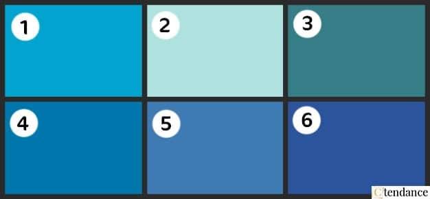 Palette De Nuancier Bleu