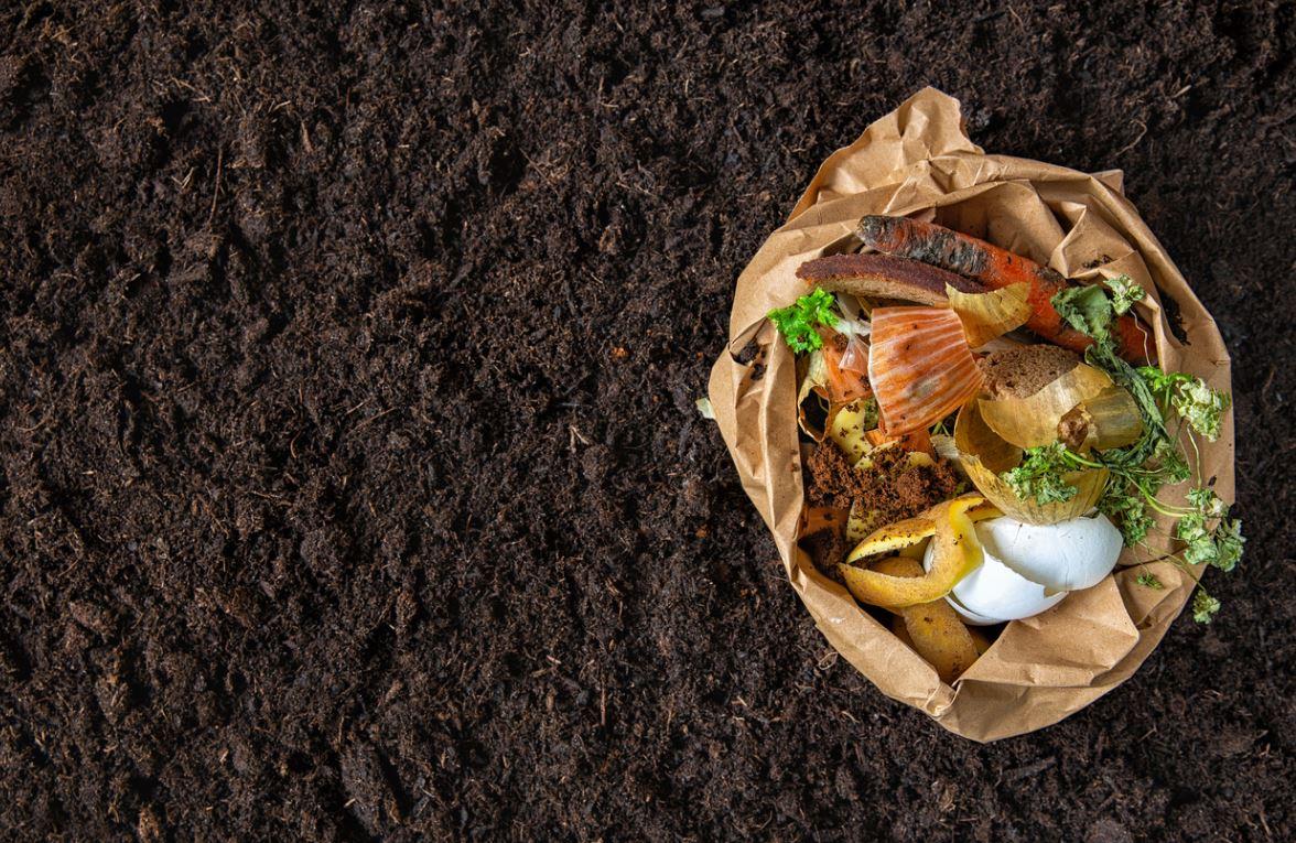 Enirchir Terre Pauvre Compost