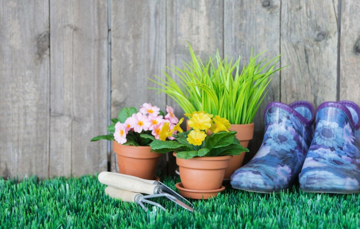 Jardinage Abri De Jardin