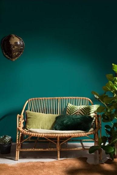 Vert Canard Et Style Nature