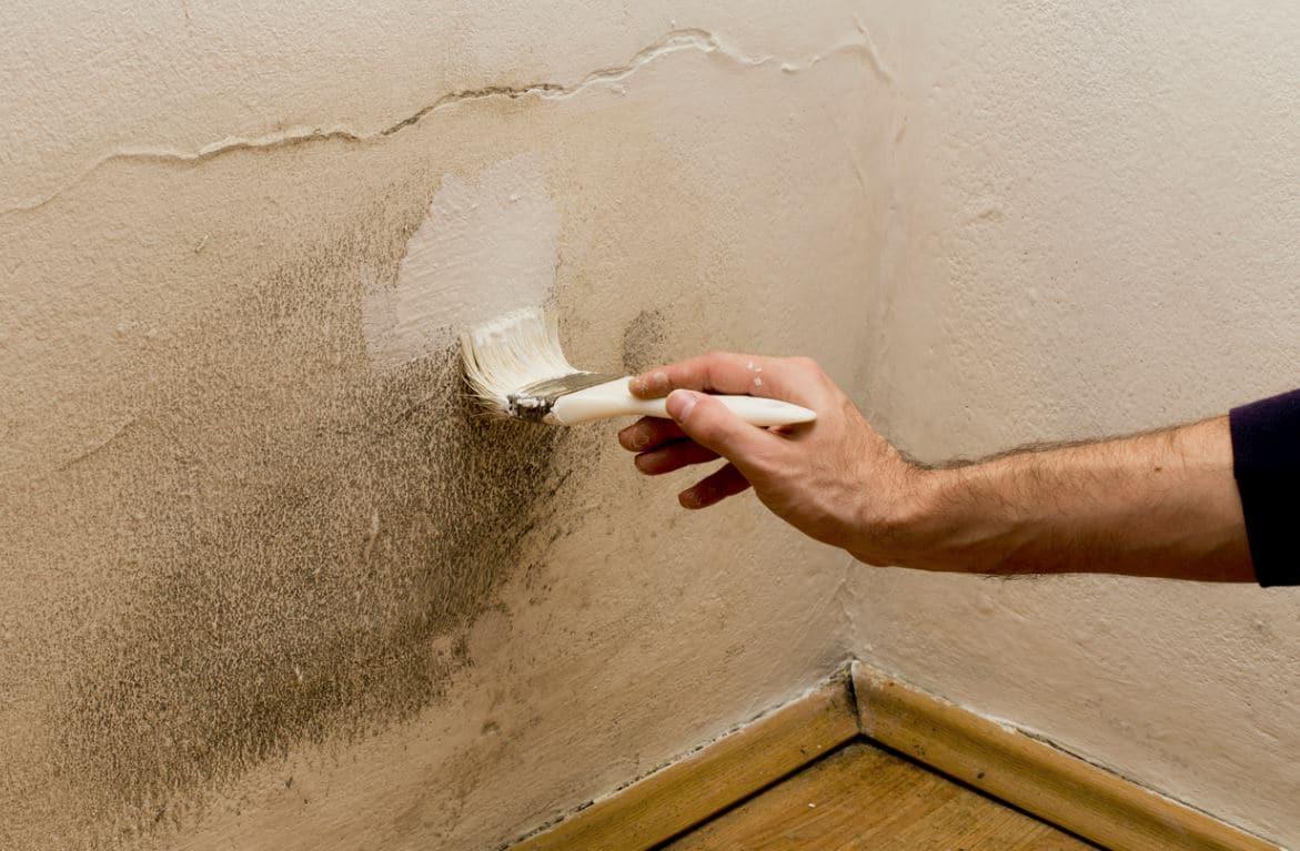 Peindre Sur Mur Humide