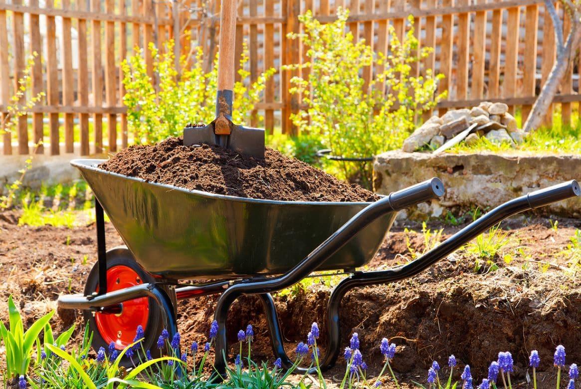 Préparer Jardin Pour Le Printemps