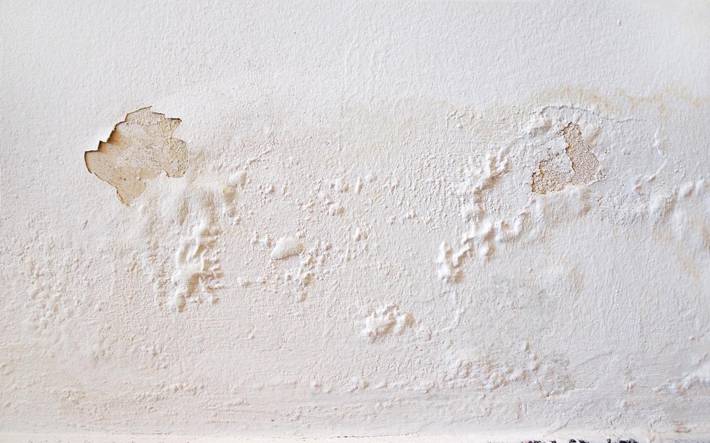 Devis Traitement Humidité  Fresnes ▷ Coût : Entreprise, diagnostic remontées capillaires murs