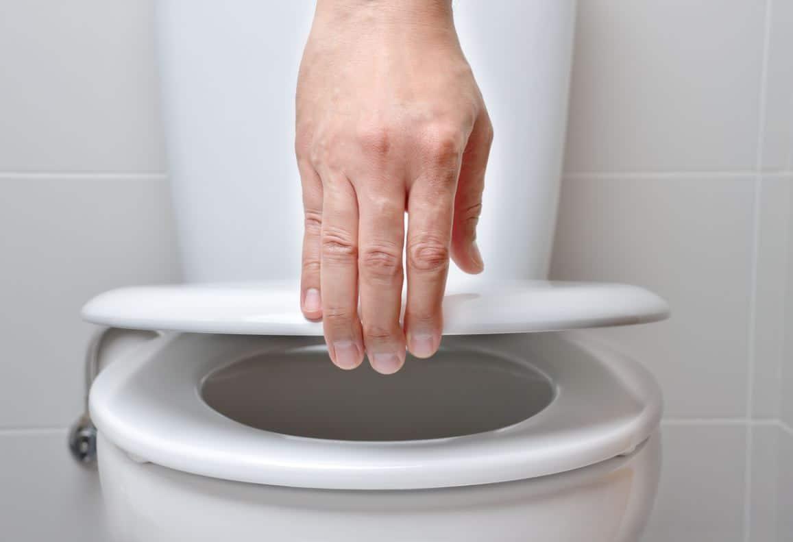 Changer Lunette Toilettes
