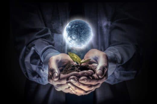 Jardiner Avec La Lune Influence