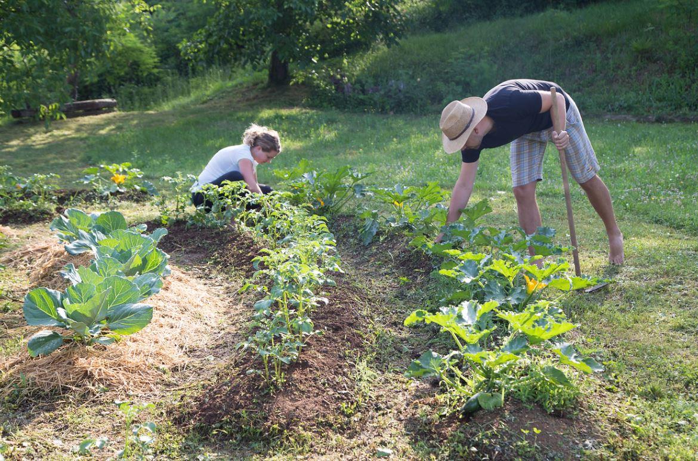 Permaculture Jardiner Sans Engrais