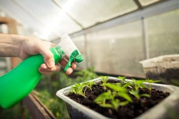 Pulvériser Fertilisant Liquide