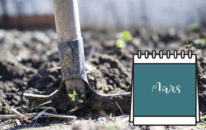 Calendrier Jardinage Mars