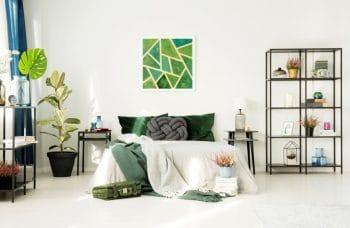 Chambre Avec Des Plantes