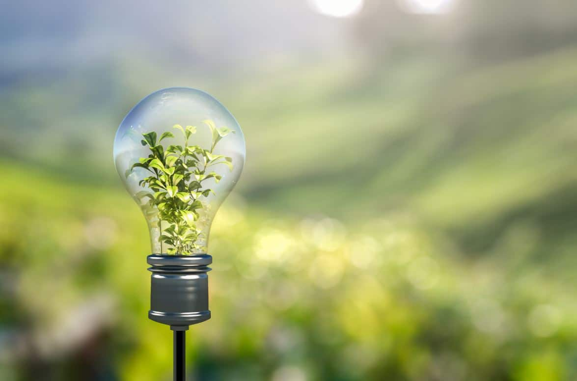 Nergie électricité Verte