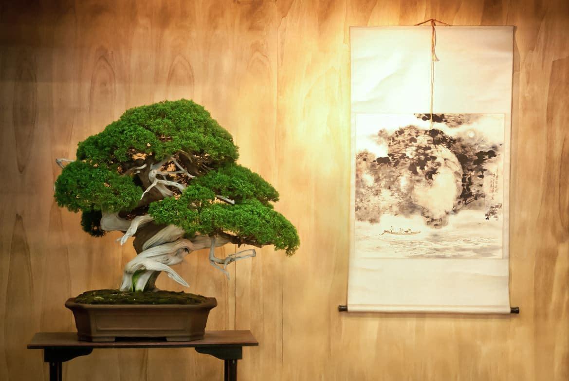 Tableau Japonais Bonsai